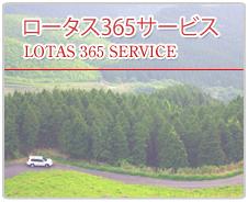 ロータス365サービス